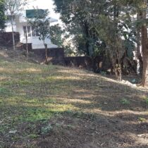 house for sale in Mandikhatar